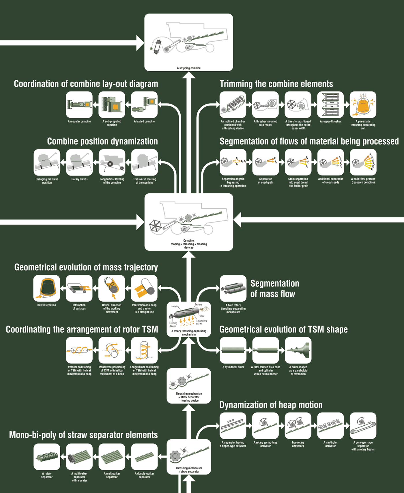 A fragment of the combine evolution tree